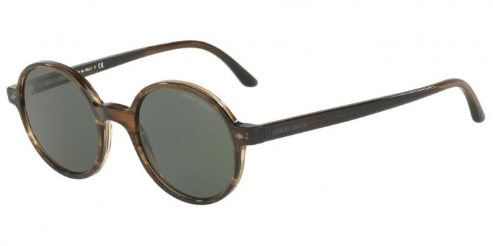 Gafas de sol Giorgio Armani AR8097 559431 STRIPED BROWN - GREEN