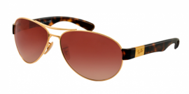 Gafas de Sol Ray-Ban RB3509 001/13 ARISTA - BROWN GRADIENT