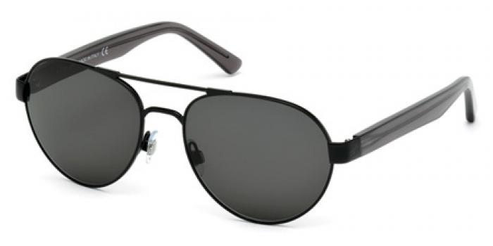 Gafas de sol Web Eyewear WE0158 01A negro brillo / gris