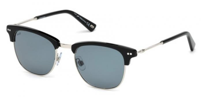 Gafas de sol Web Eyewear WE0214 01A negro brillo / gris
